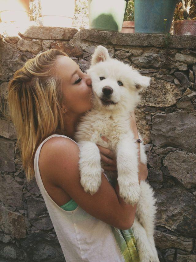 8 Cosas que sólo los amantes de los perros pueden entender