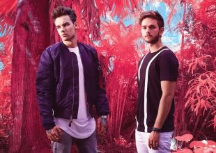 Get Low - Zedd & Liam Payne