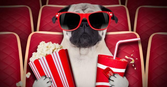 Estas son las 10 mejores películas del año según la Revista Time