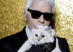 Conocé a Choupette, la gata que heredará la fortuna de Karl Lagerfeld