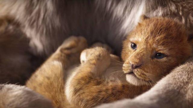 ¡Preparen sus pañuelos! Tenemos el nuevo tráiler de 'El Rey León'